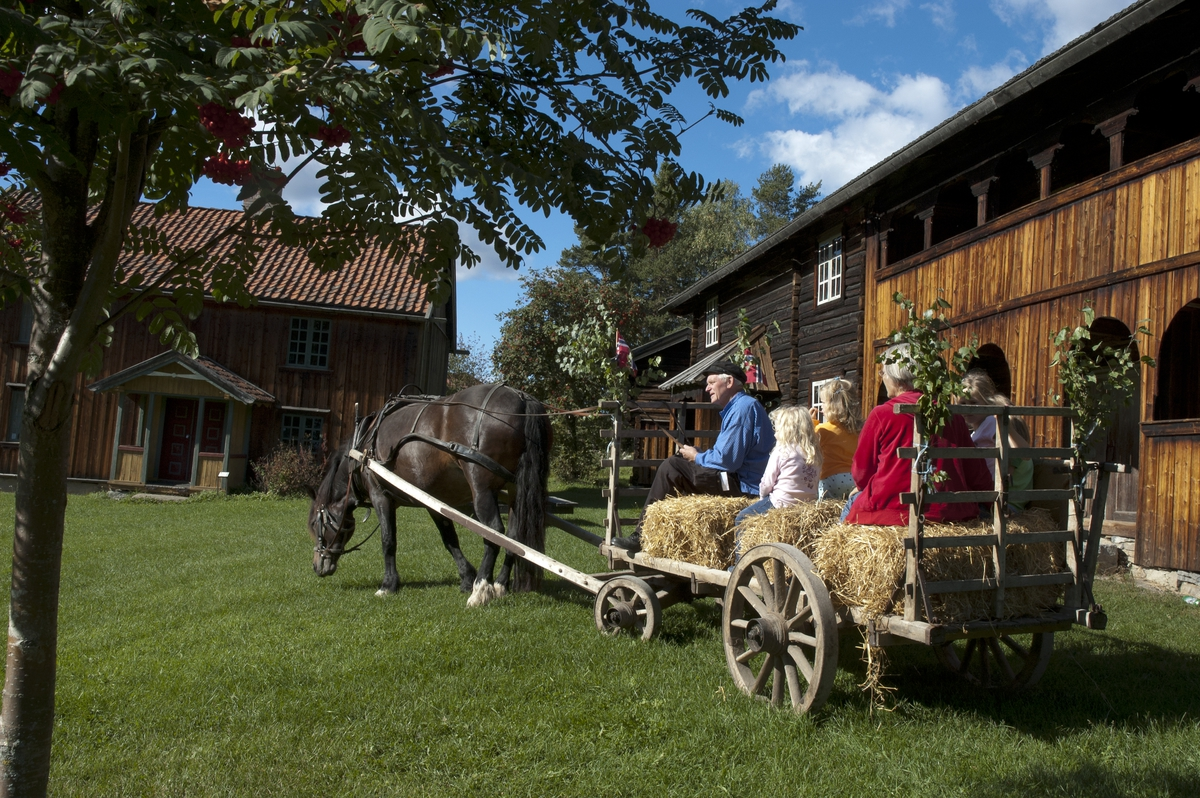 Hest og kjerre på Åsgarden på Domkirkeodden. Kolsetbygningen, Kolset og Vartomtenbygningen, Vartomten. Kusk Martin Nysæther,