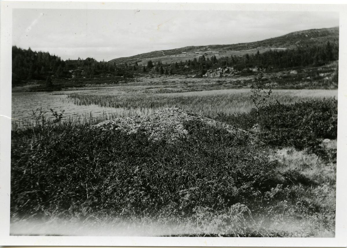 En gravhaug som ligger ved en odde ved Langetjedn i Valdres. Fjeslie kan skimtes i bakgrunnen.