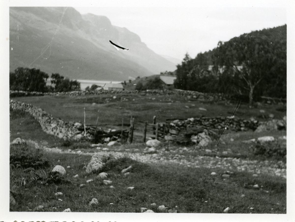 Landskapsbilde av et innhegna området. Området er inngjerdet med steingjerder. I bakgrunnen skimtes noen hus, muligens kvernhus.