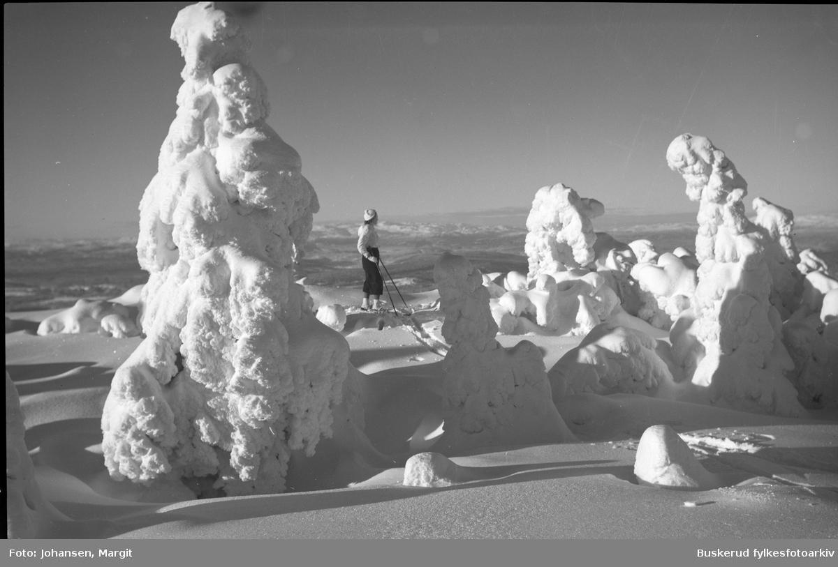 Vintermotiv med skiløper på Ringkollen