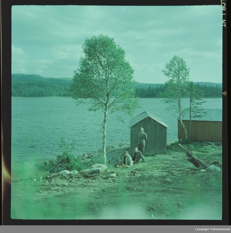 Fra Grønningen, familen Renbjør er på tur.