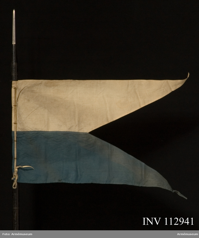 Grupp D I. Flaggan är av den för de bayerska kavalleriregementena fastställda modellen, tvåtungad och upptill vit, nedtill blå.  Flaggan fasthålles av en vit skinnrem, som är dragen genom mässingsöglor.