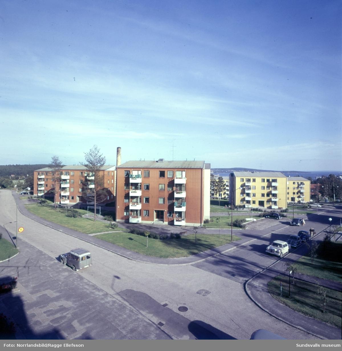 Bostadsområdet Tallkronan vid Tomtegränd-Tallrotsgatan i Haga.