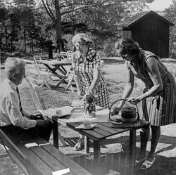 """Enligt text: """"Vammenkvarnen H. Ålund 1969""""."""