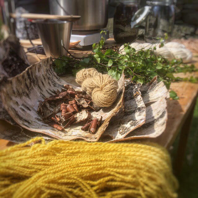 ullgarn og ingrediensar til plantefarging (Foto/Photo)