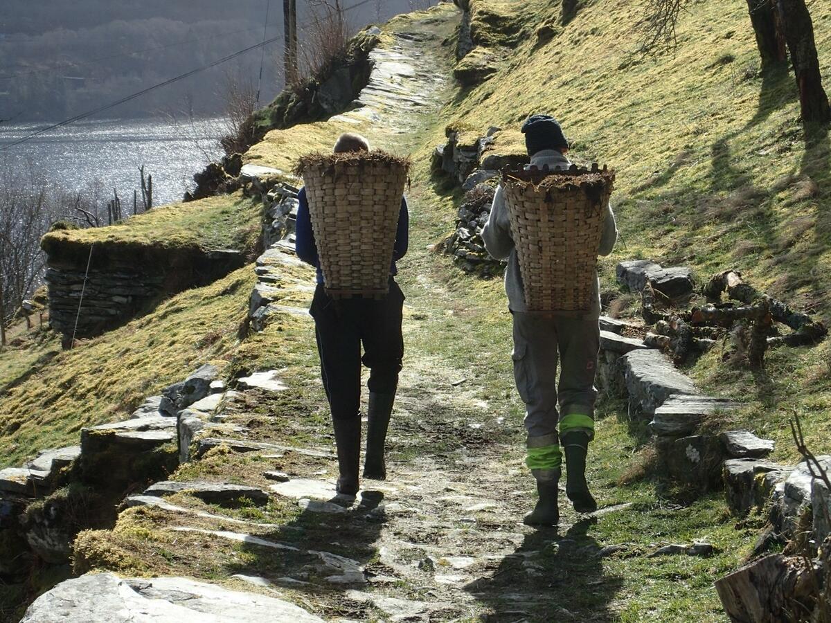 mann og kvinne ber på to kiper i eit landleg landskap (Foto/Photo)