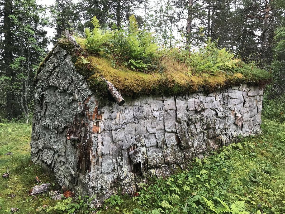 Husgammen (Gåetie) i Sørvassdalen er en av to stående bygninger på plassen som tilhørte familien til Gunnar Johnsen Njarka og Gippe Njarka. Husgammen skal være bygd opp før1926 og ble brukt som bolig av familien mens reinflokken beitet i nærområdene. Boplassen dokumenterer en sentral epoke i sør-samisk historie overgangen fra ¨gammel¨ til ¨ny¨ tid. Altså der en flyttet over fra gammen (Gåetie) til huset. Bygget er delt opp i tre rom der alle har et enkelt vindu i vinduskarm mot Sør og Vest. Det innerste rommet har fungert som oppholdsrom og soverom. Midtrommet må regnes som kjøkken, mens det er en gang ved inngangsdøra. I oppholdsrommet er det tregulv som er spikret på stokker som ligger direkte på bakken. I gang og kjøkken er det lagt steinhyller direkte på bakken.