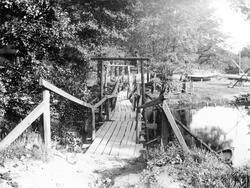 Träbro över Säveån i Lugnet. Mellan trädens löv till vänster