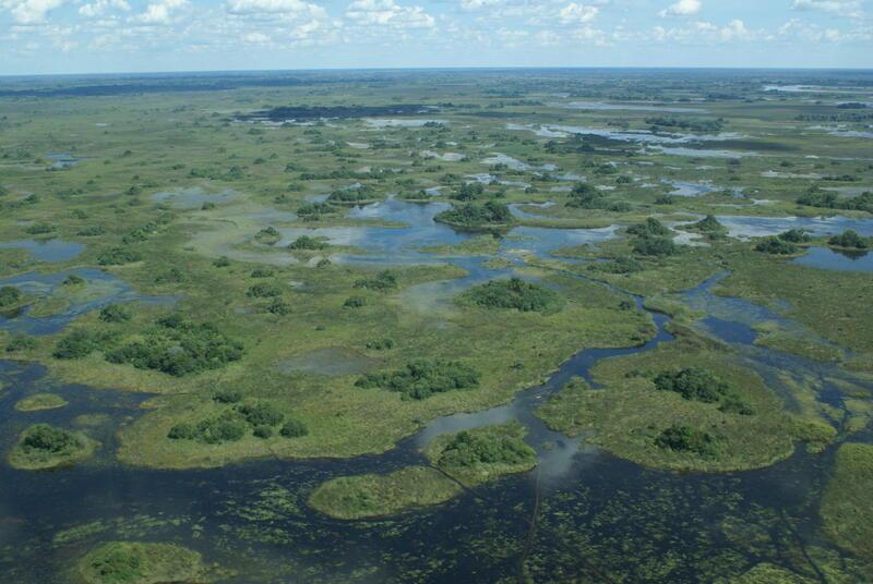 Okavangodeltaet ligger nordvest i Botswana i Afrika og er verdens største innlandsdelta. Foto: Justtin Hall (Foto/Photo)