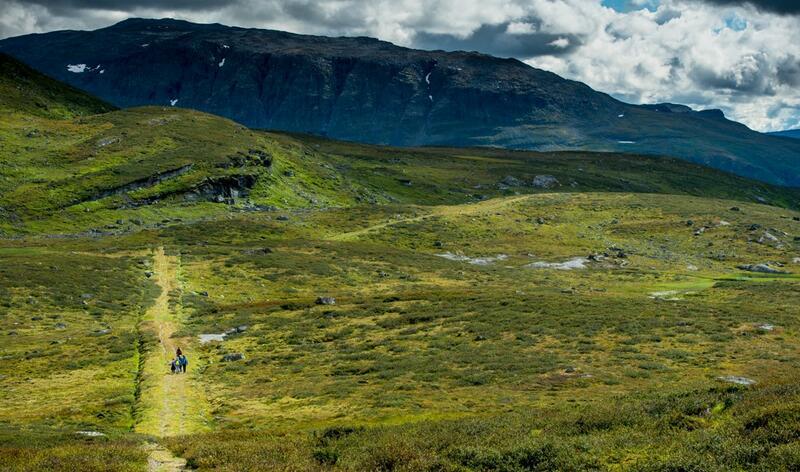 Over Filefjell. Foto: Ann Kristin Engh (Foto/Photo)