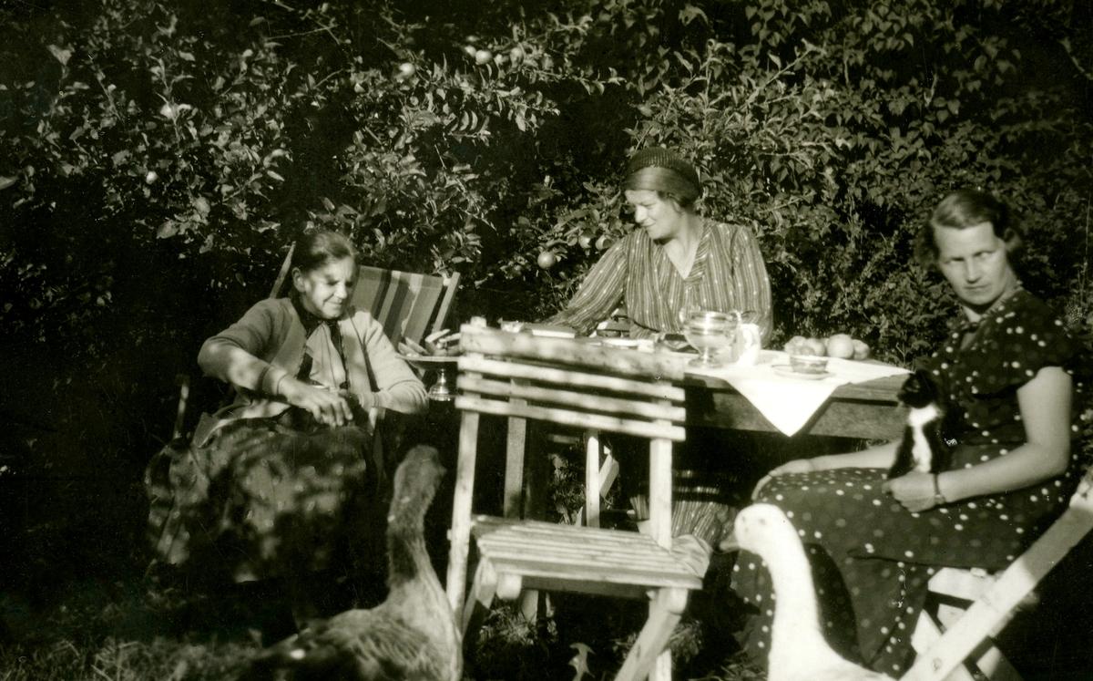 """Tre kvinnor sitter i trädgårdsmöbler, Kållered Stom """"Nygård"""" okänt årtal. Från vänster: 1. Karolina* Emilia Gustafsson, född 1873 i Torslanda, död 1949 i Kållered. Gift 1896 med Birger Gustafsson. Dotter till Karl August Eliasson Alm och Emilia Sofia Wessberg, Ekan i Kållered. Övriga två kvinnor är okända."""