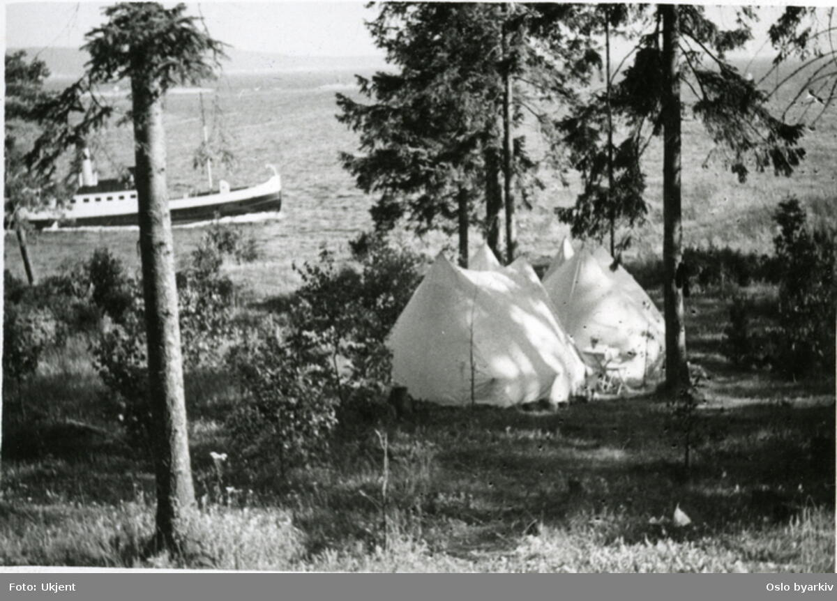 I telt blant barnålstrær. DS Hval med rute mellom Oslo og Hvalstrand Bad i bakgrunnen. Ca. 1933. Foto: Oslo byarkiv. (Foto/Photo)