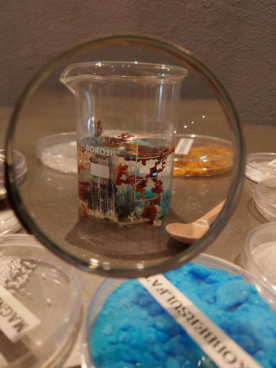 Vi gror krystaller i et glass (Foto/Photo)