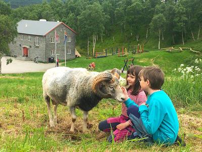 Doktortjønna - geit, jente og gutt. Foto/Photo