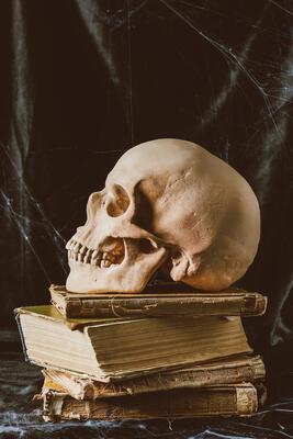 halloween-skull-on-ancient-books-on-black-cloth-wi-VLK9JJ9.jpg. Foto/Photo