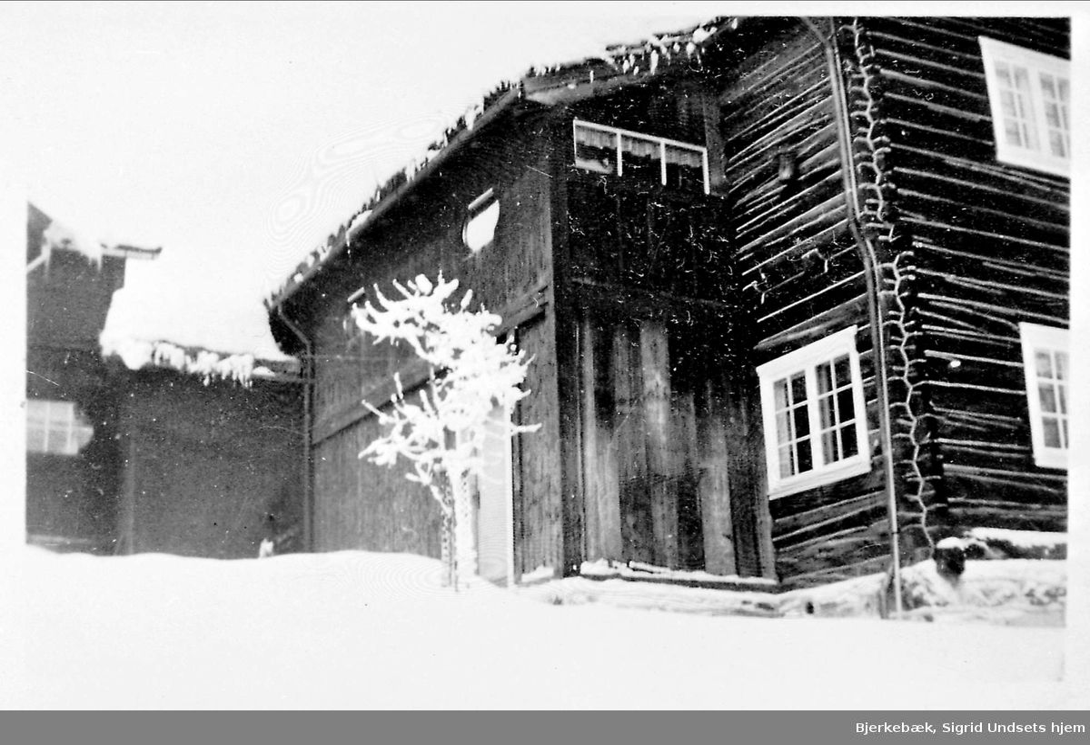 Hus, hage, snø,