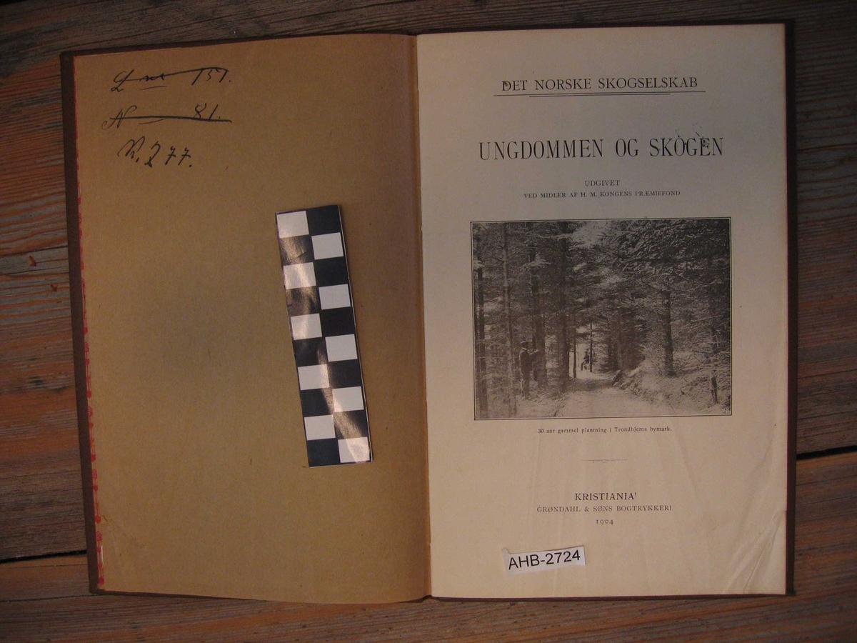 Bok-skogbruk