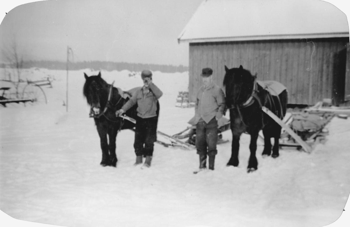 Gunnar og Bjarne Ruud med hest og gjeitdoning.