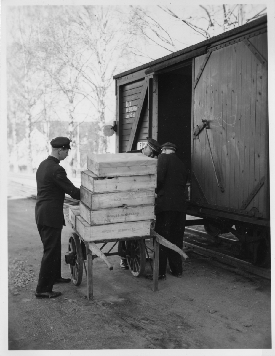 Innlasting av kasser fra Norges Makrellag i fiskevognen. Stasjonsbetjent Henry J. Hageberg (?) t.v.