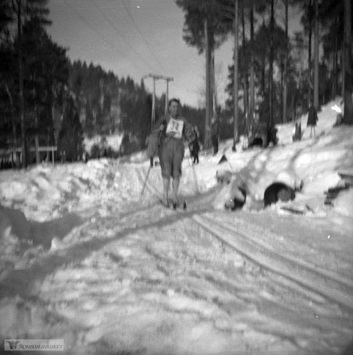 Langrenn i 1951.