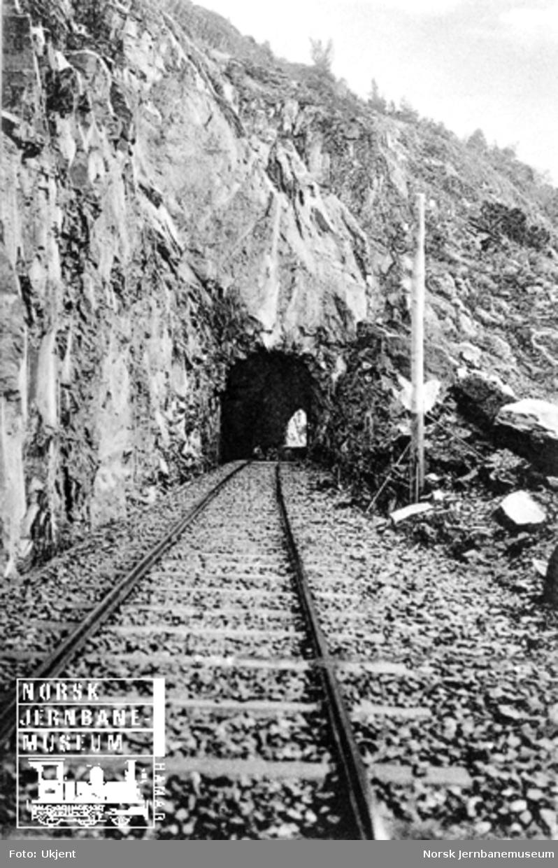 Linjeføringen mot Koabjørgen tunnel