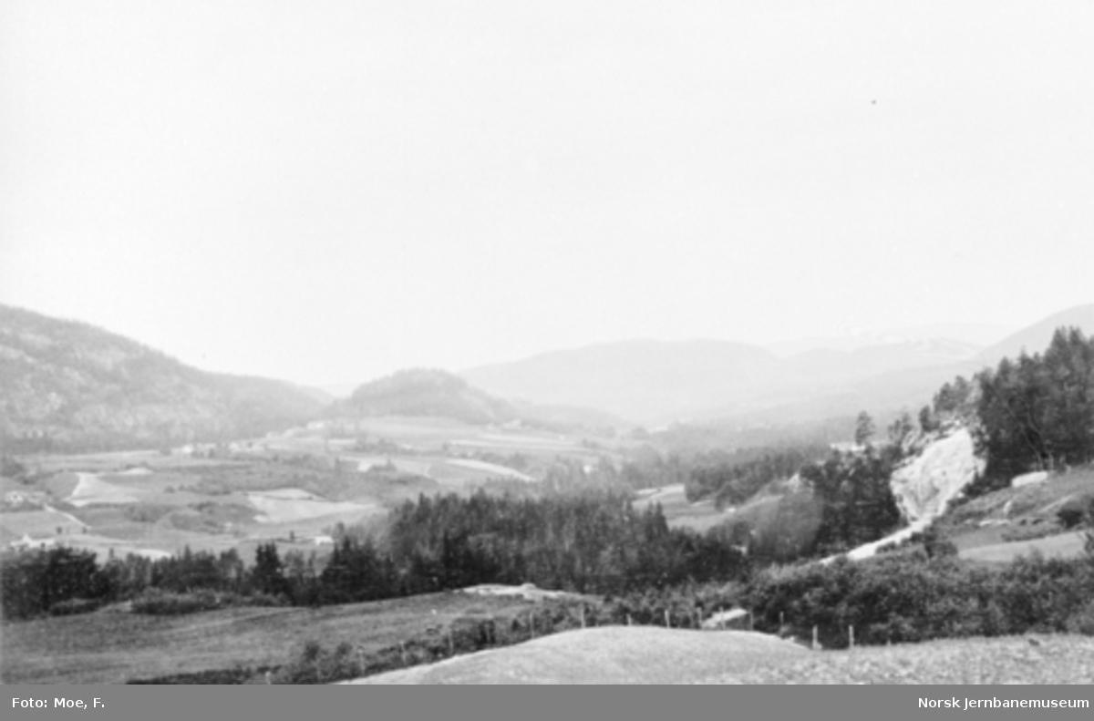 Ved Skoeelven og Hantogårdene