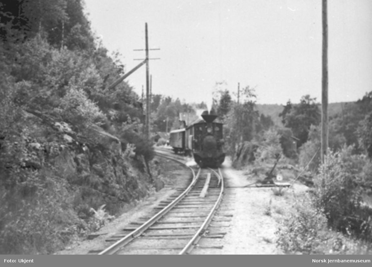 Sørgående tog på vei ut fra Iveland stasjon