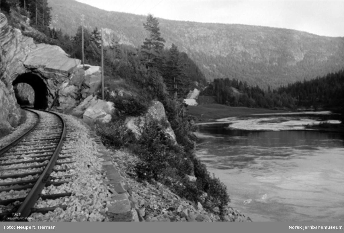 Parti fra Numedalsbanen med tunnel