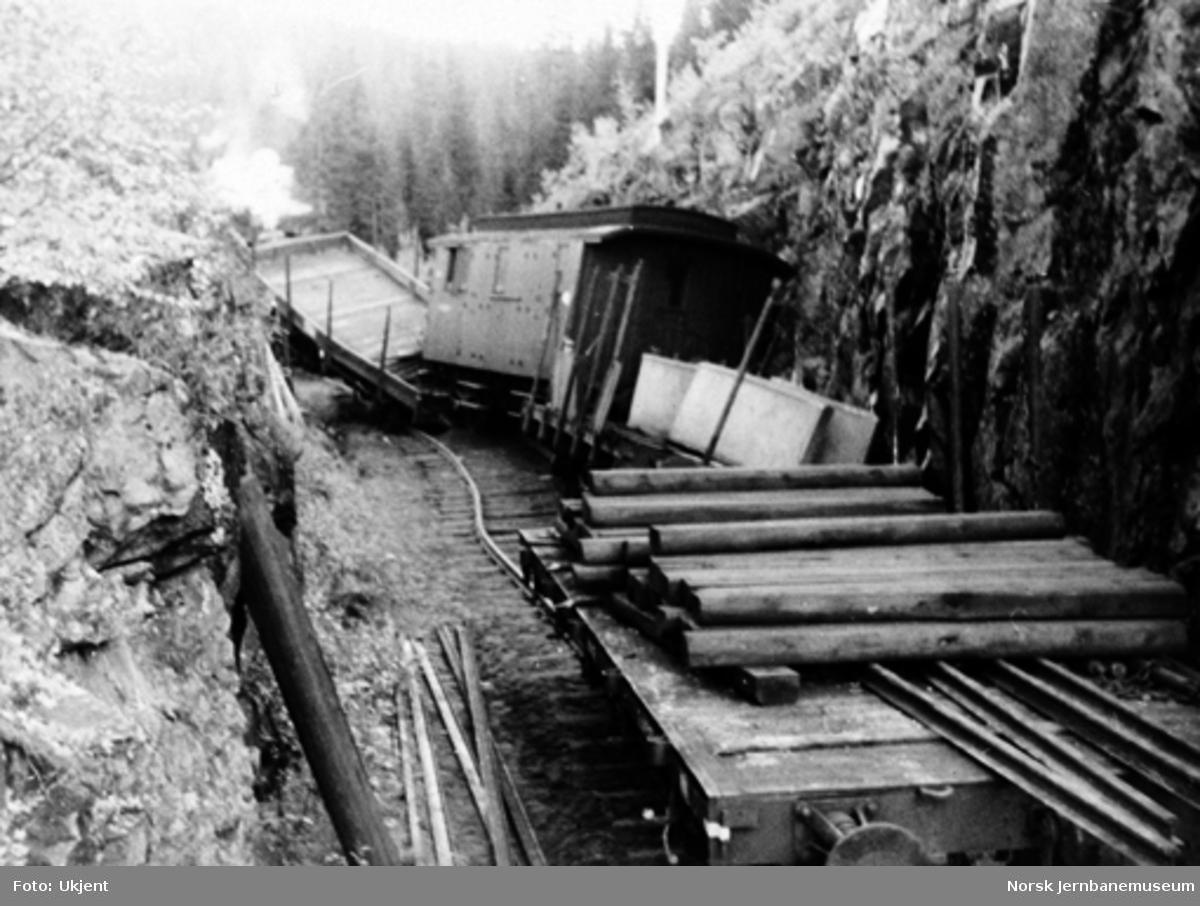 Avsporet godstog