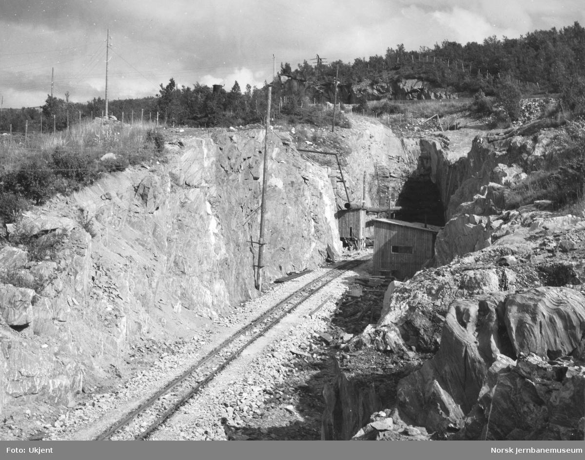 Nordre innslag til Naurstadeidet tunnel