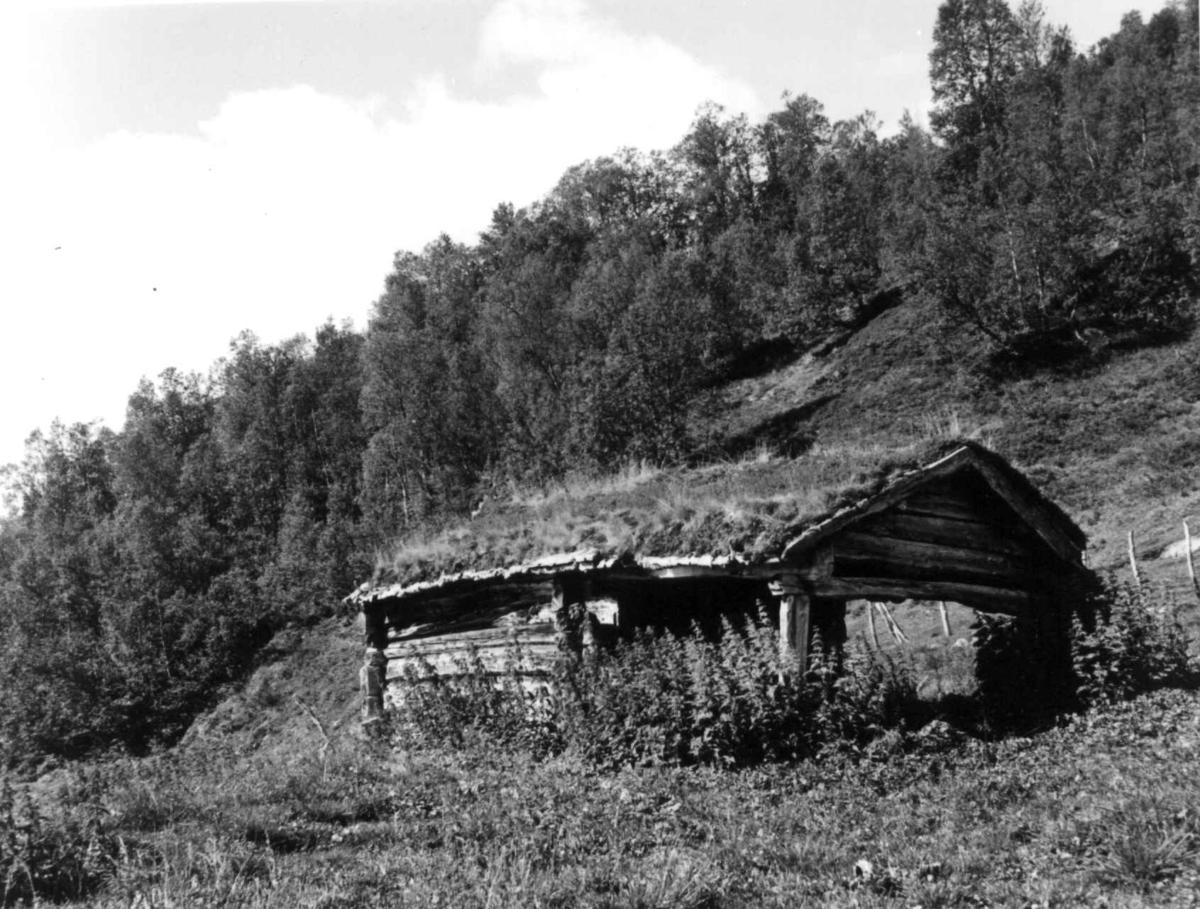 Bergsetra eller Ronningssetra