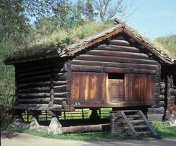 Bur fra Trøym, Hemsedal