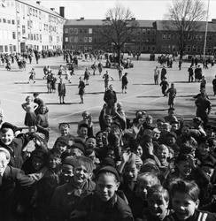 Rast på Kirsebergsskolan i Malmö