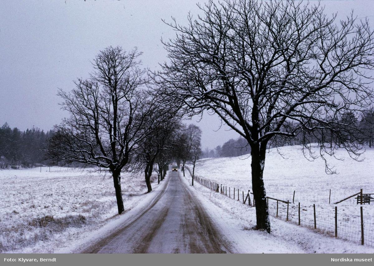 Landsväg, Vinter. Elfviksvägen, Lidingö.