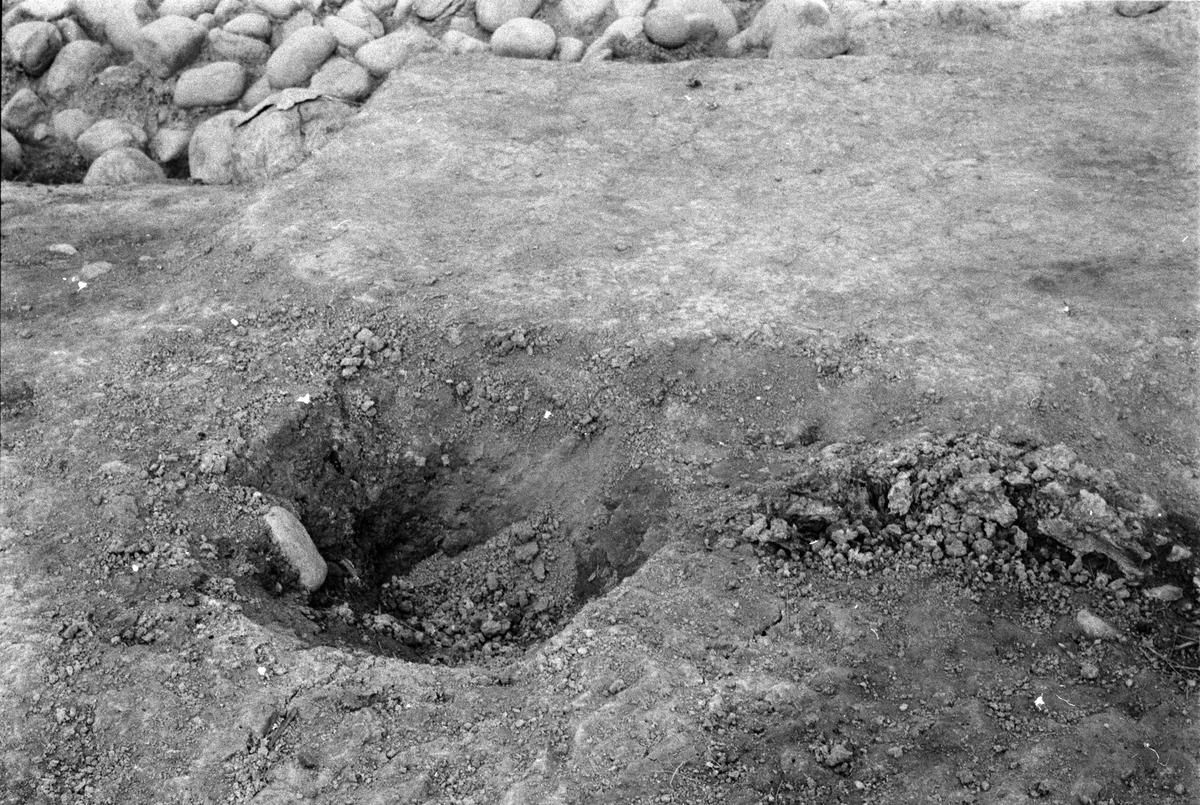Kungsgårdsplatån - Arkeologi Gamla Uppsala 1990
