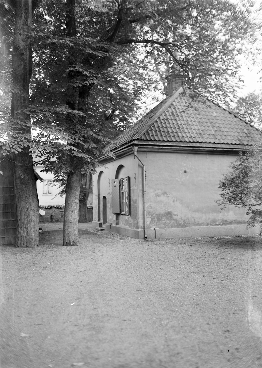 Schefferus bibliotek, kvarteret Disa, Uppsala