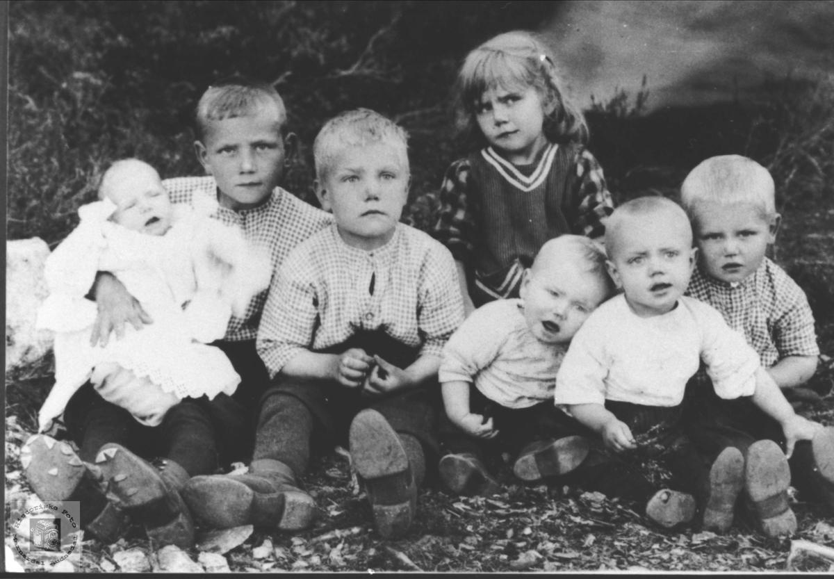 Søskenportertt Olsen, et av disse barna ble bosatt på Skuland i Laudal.