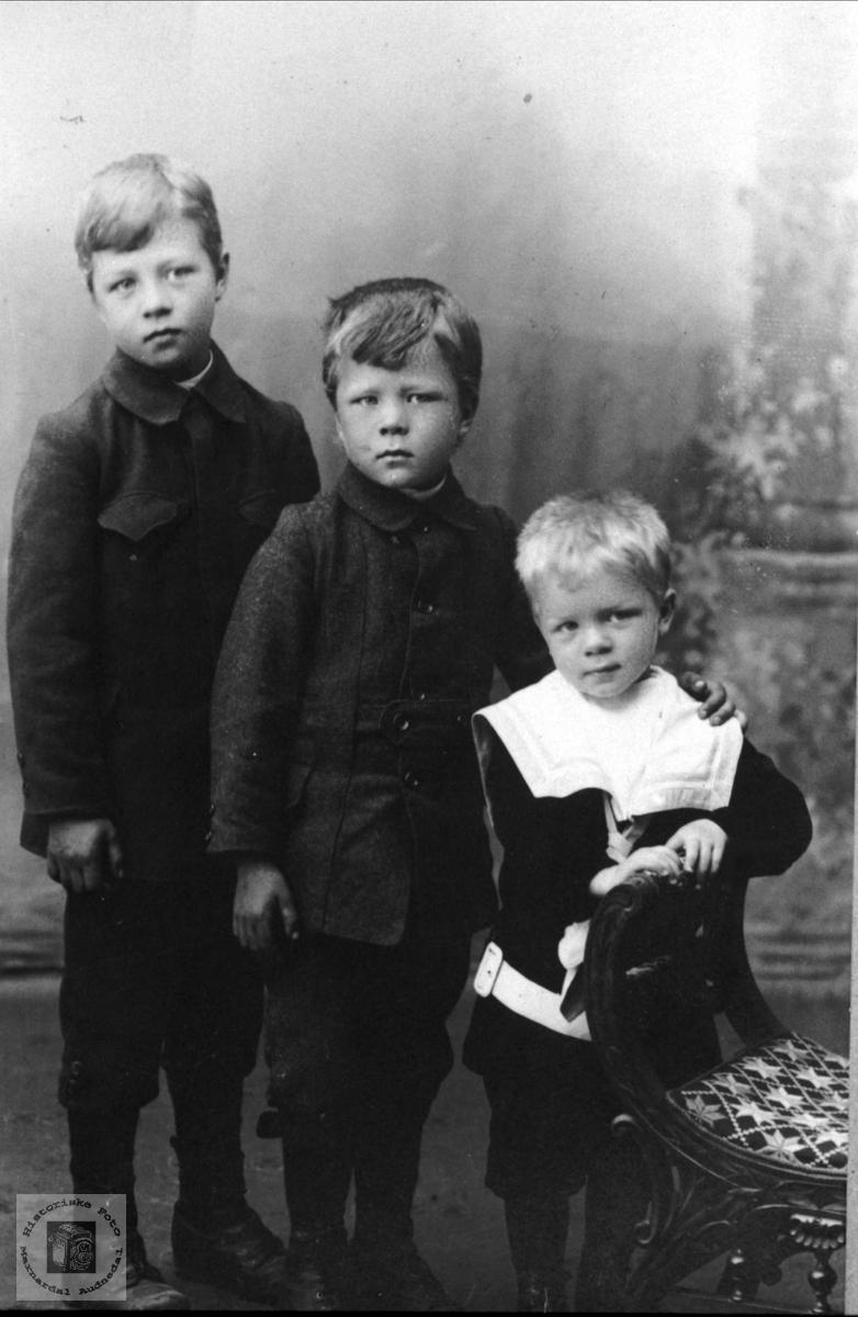 Søsknene Simon, Anders og Bjørn Usland, Øyslebø.