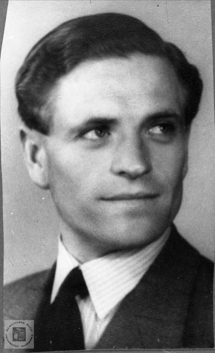 Portrett av Arne Bue, Øyslebø.