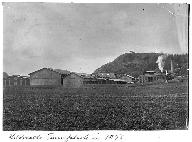 """Text på kortet: """"Uddevalla Tunnfabrik år 1893""""."""