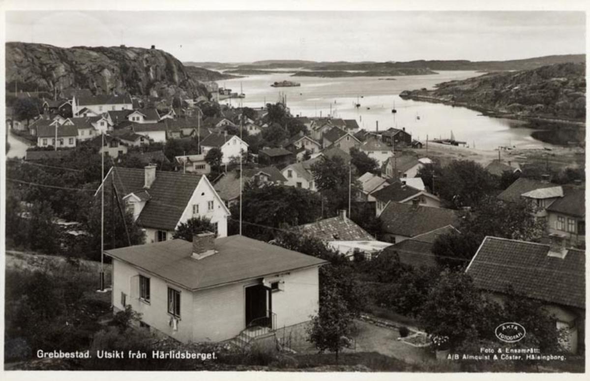 """Tryckt på kortet: """"Grebbestad. Utsikt från Härlidsberget."""""""