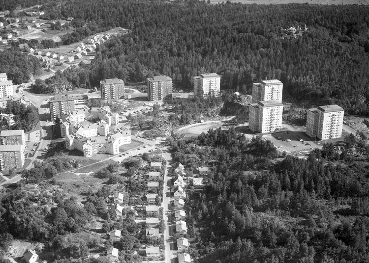 Flygbild bostadsområdet Tureborg 1962