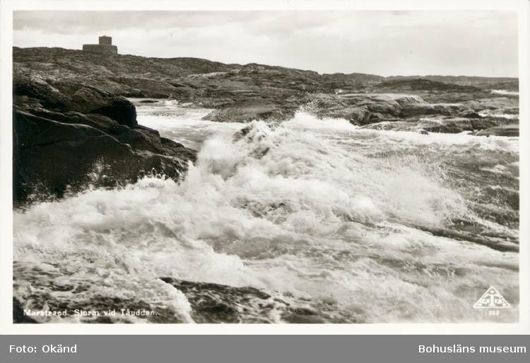 """Tryckt text på kortet: """"Marstrand. Storm vid Tåudden."""" ::"""
