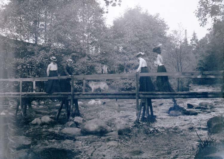 Fyra kvinnor och en hund går över en mindre träbro.