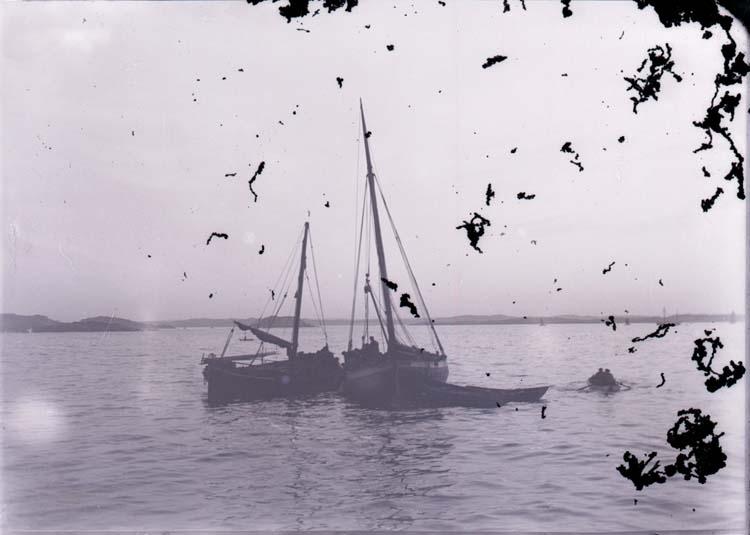 """Enligt text som medföljde bilden: """"Lysekil Snörpvadfiske Dec 06""""."""