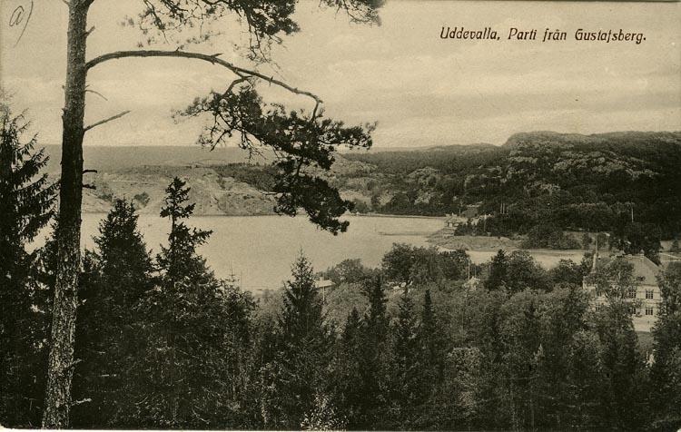 """Tryckt text på vykortets framsida: """"Uddevalla, Parti från Gustafsberg."""" ::"""