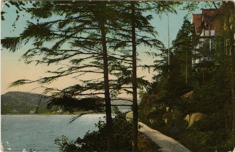"""Tryckt text på vykortets baksida: """"Gustafsberg strandvägen."""""""