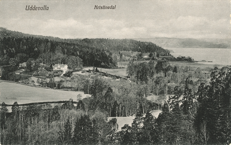"Tryckt text på vykortets framsida: ""Uddevalla Kristinedal.""  ::"