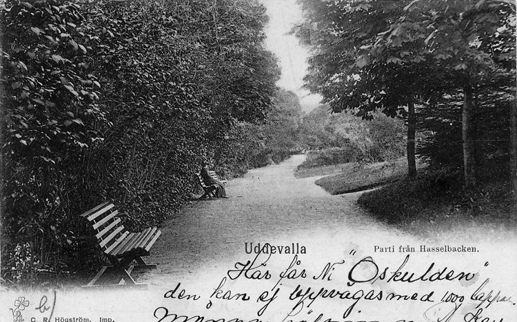 """Tryckt text på vykortets framsida: """"Uddevalla Parti från Hasselbacken."""""""