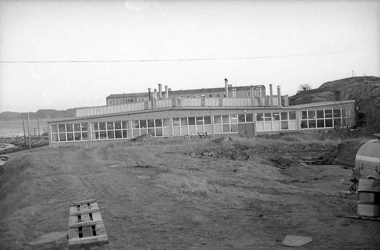 "Enligt fotografens notering: ""P.L.M. i Lysekil 1964""."
